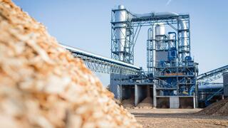 Orange, Suse, Homann Holzwerkstoffe: Die Anlagetipps der Woche: Holz hängt an der Börse alle ab