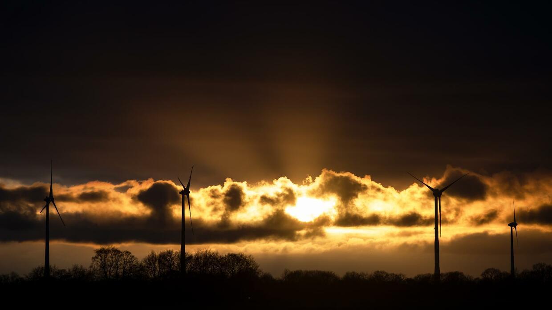 """GE-Deutschland-Chef Dierker: """"Windkraftanlagen sind auch eine Zumutung"""""""