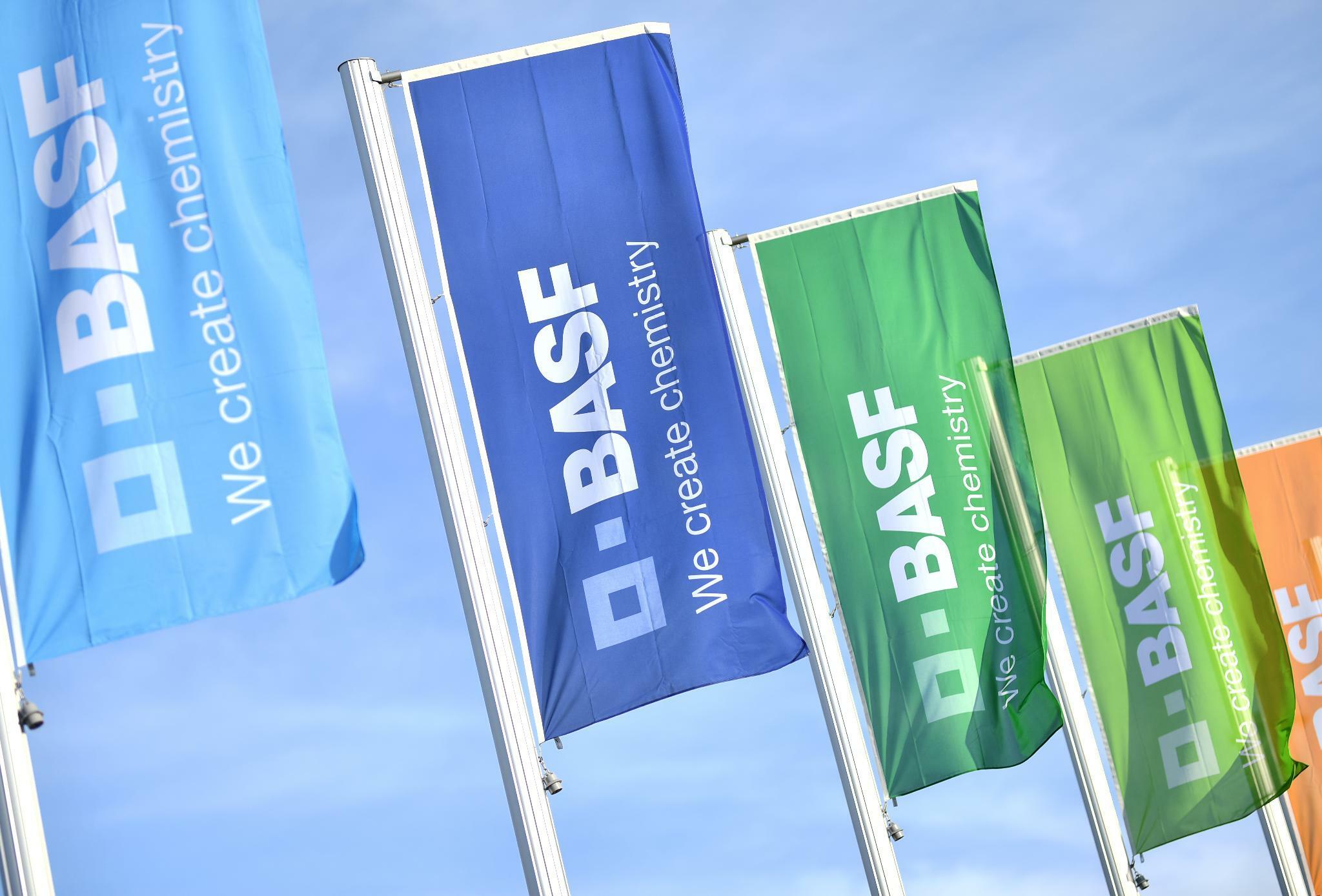 Chemiekonzern: BASF prüft Milliarden-Investition in indisches Werk