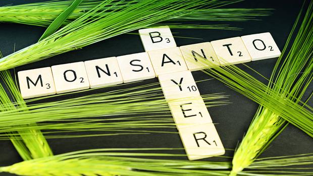 Quartalszahlen kompakt: BASF überzeugt, Bayer schwächelt ein wenig vor der Monsanto-Übernahme