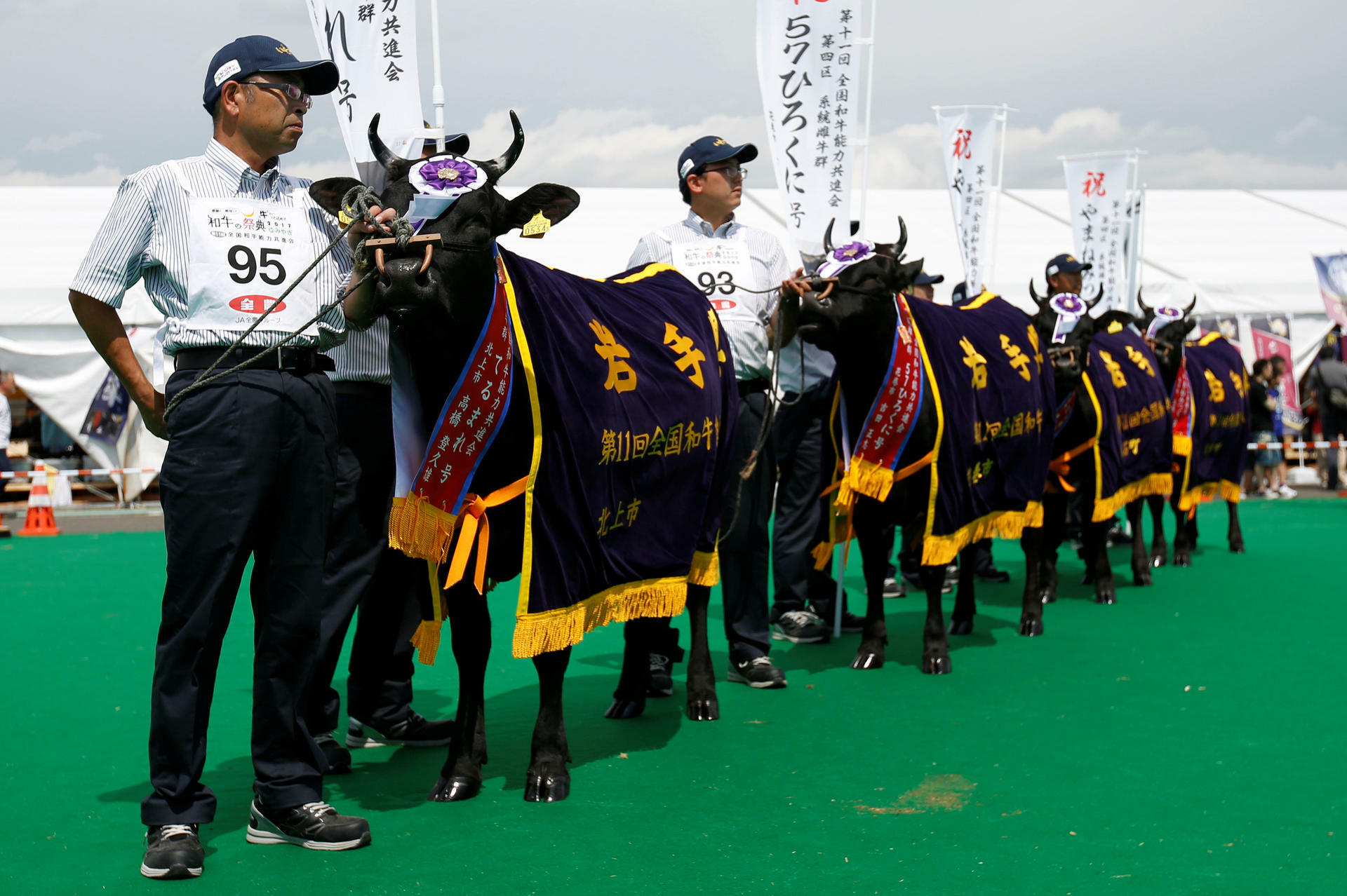 Außergewöhnlich Kobe-Rinder: Was Kobe-Beef so besonders macht #VF_57
