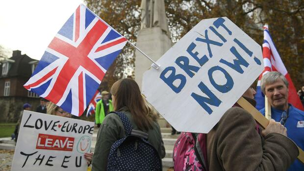 Brexit-Demonstranten in Großbritannien Quelle: REUTERS