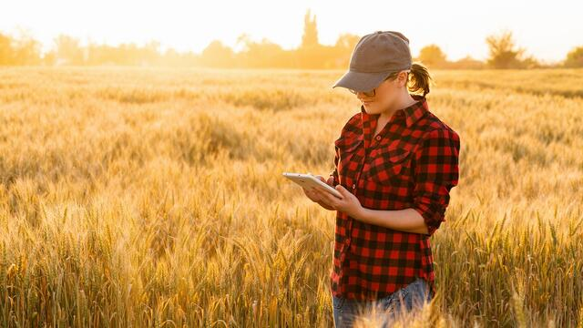 Digital Farming: Hightech in der Landwirtschaft