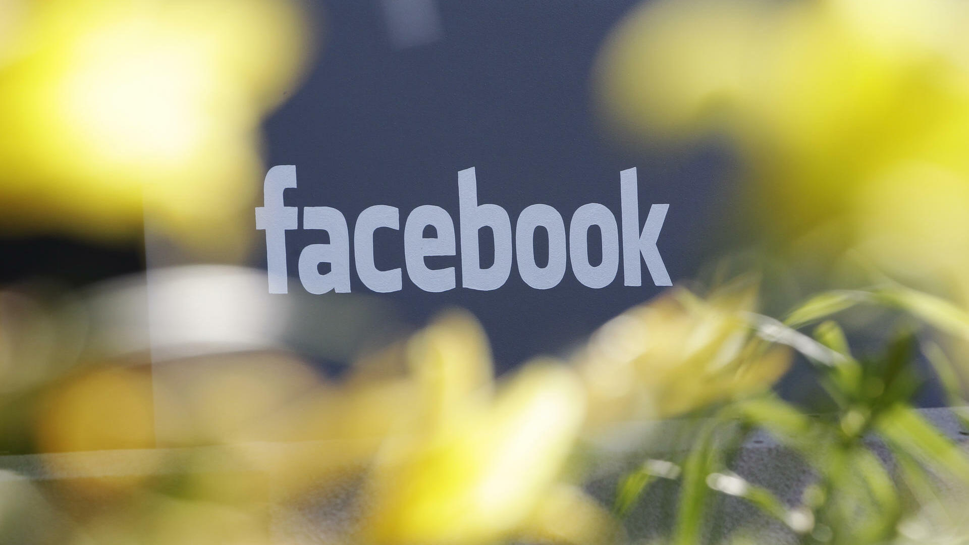 Facebook's headquarters behind flowers in Menlo Park Quelle: dapd