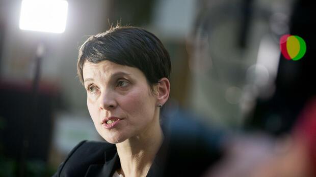 Landtags-Ausschuss für die Aufhebung der Immunität von Frauke Petry