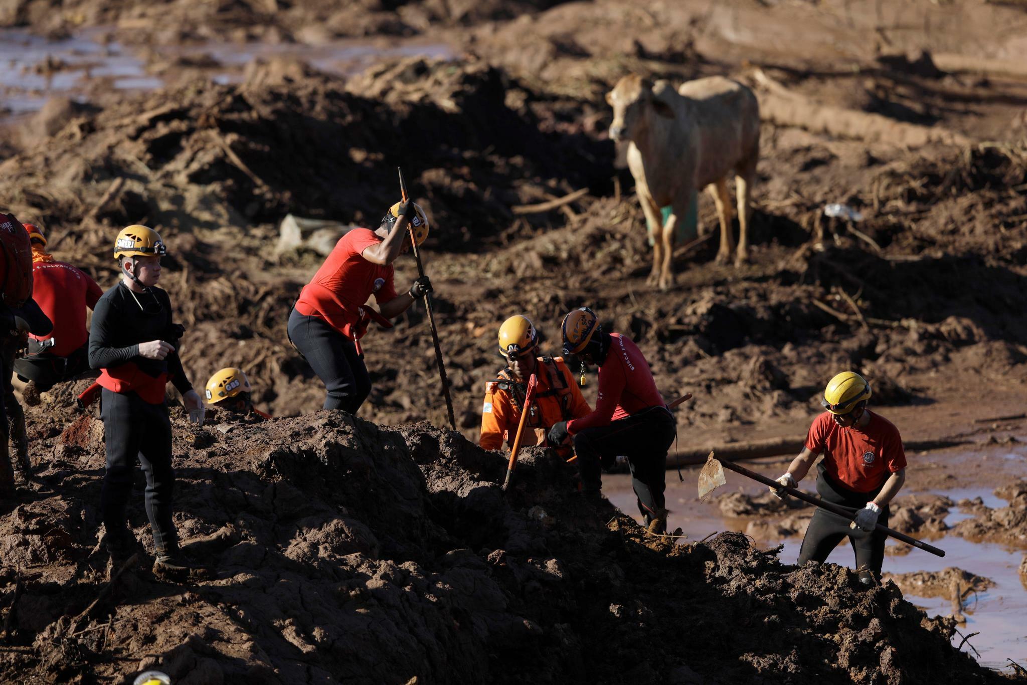 Nach Unfall an Eisenerzmine: Vorwürfe gegen Vale und TÜV Süd wegen Dammbruchs in Brasilien