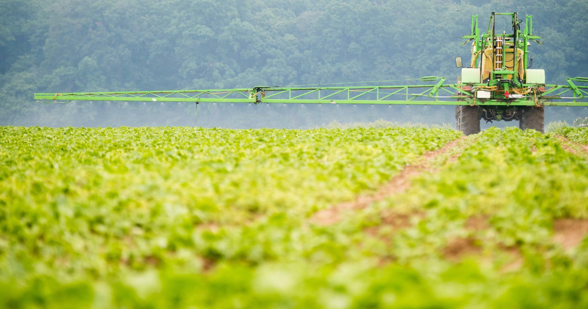 Kritik an Monsanto wegen Finanzierung von Glyphosat-Studien