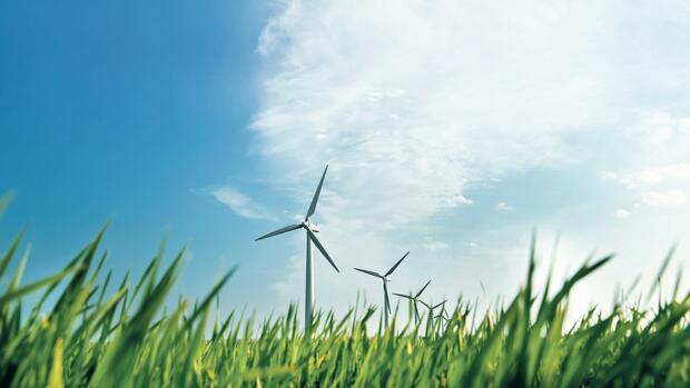 Verkehrte (Finanz-)Welt: Mit Nachhaltigkeit gegen das Risiko