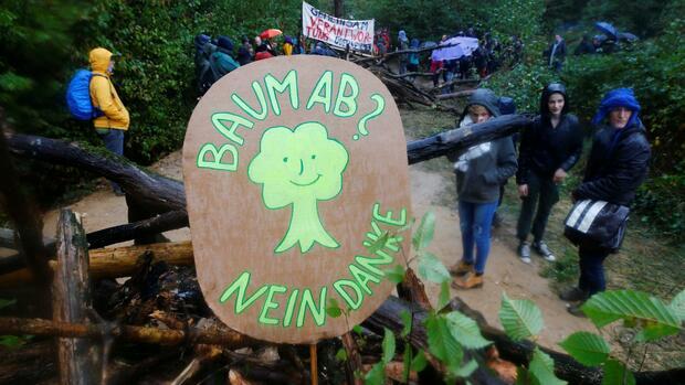 Räumung im Hambacher Forst fortgesetzt - 53 Baumhäuser abgebaut
