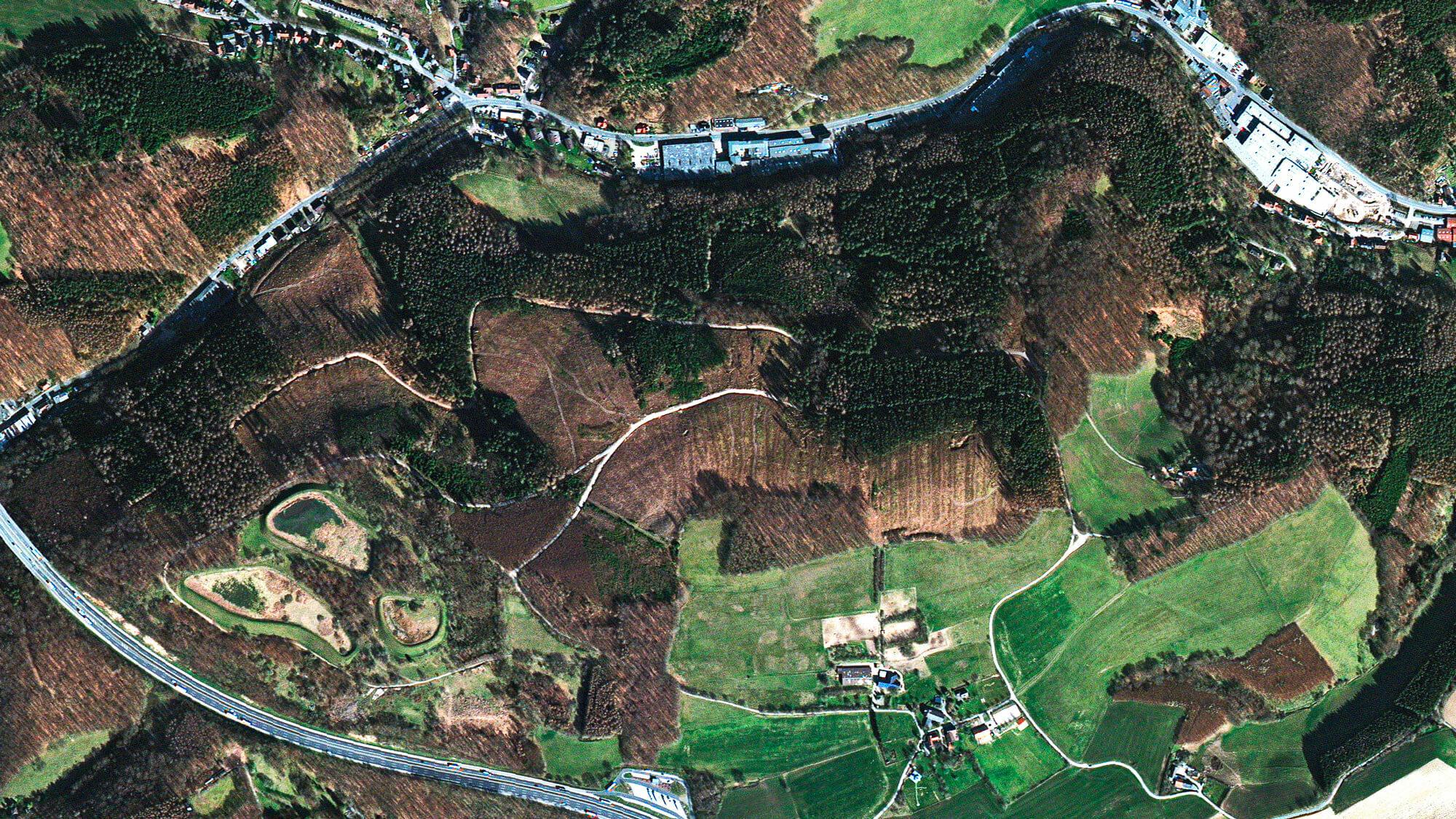Waldstück in Lüdenscheid