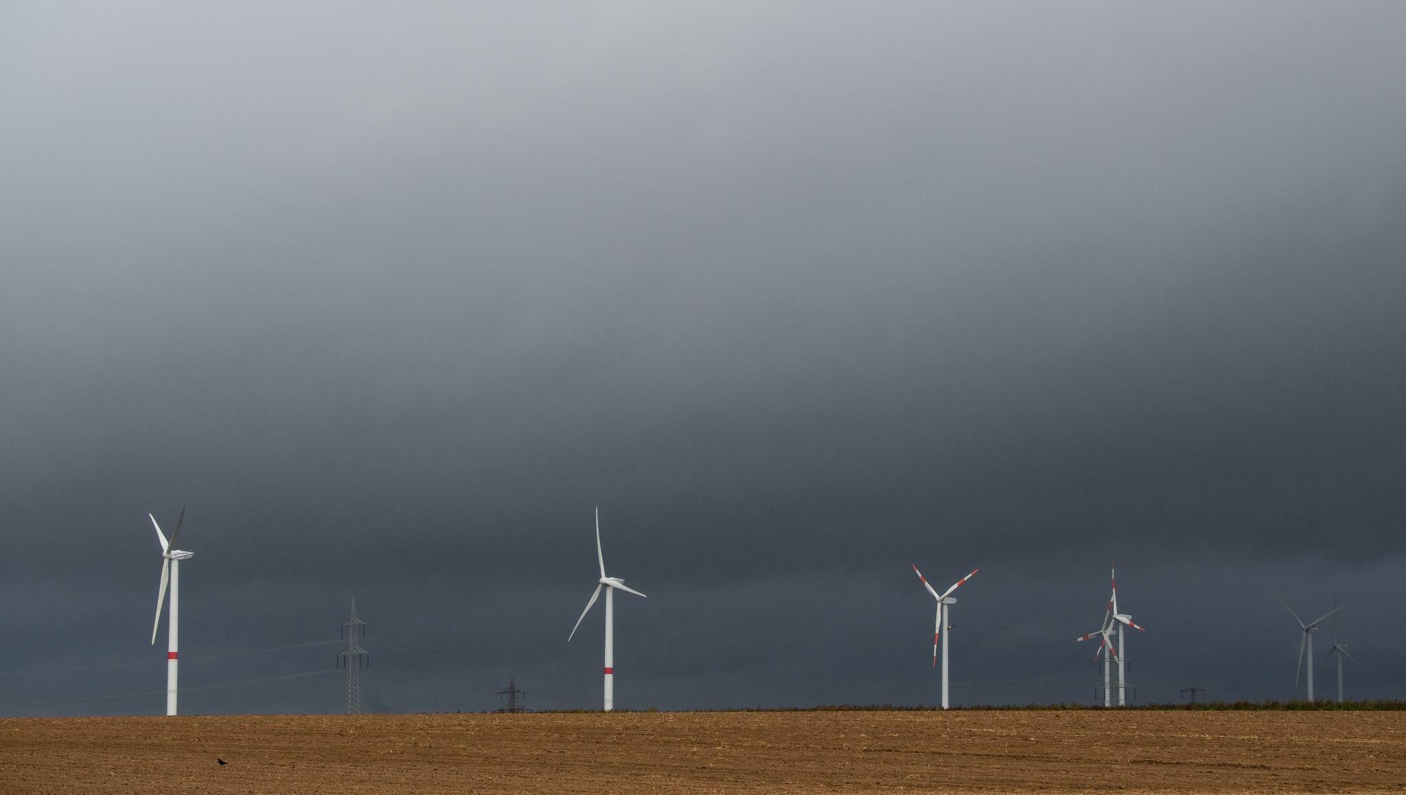 Industrie: Der stockende Ausbau der Windenergie beunruhigt Maschinenbauer