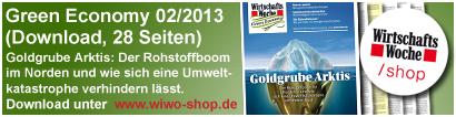 WiWo Green 2/2013